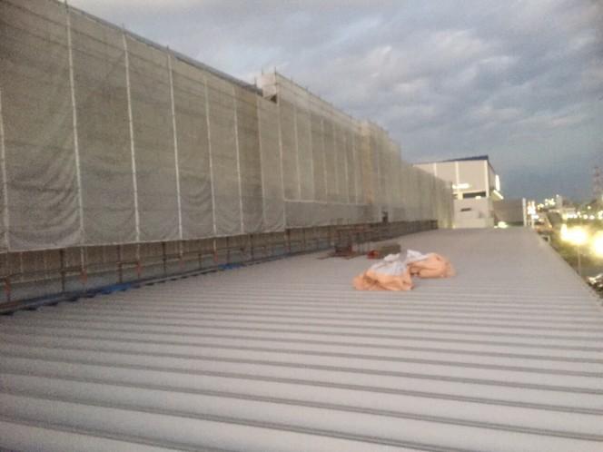 今日の現場:屋根の上で