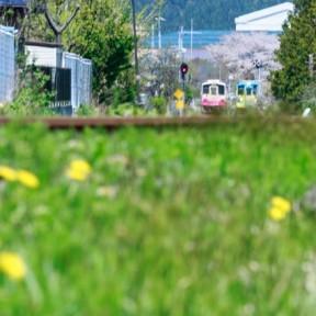 春レジャー